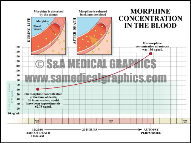 Medical Illustration Morphine Concentration Blood Diagram