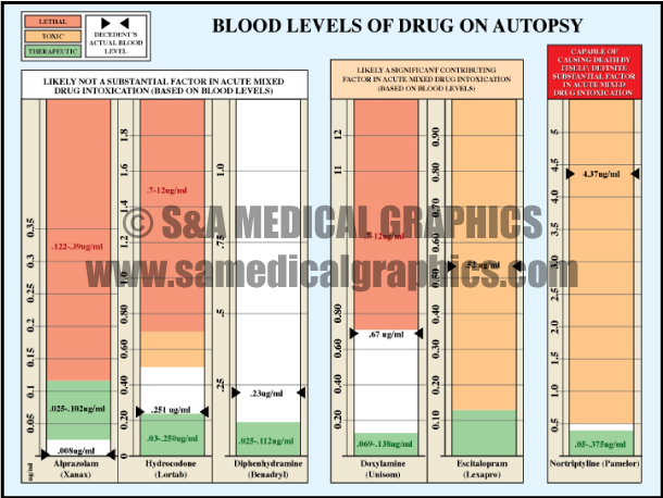 Medical Illustration Chart Graphic